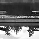 Picnic Tables Reflected by Lynn  Gibbons