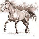 a horse again by Alleycatsgarden