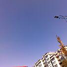 SKY by nneri12