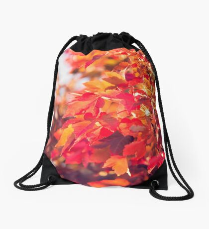 Autumn leaves of red and gold Drawstring Bag