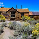 Bodie Summer Show by photosbyflood