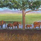 African Elephants by jfrier