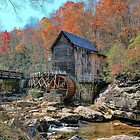 A Scenic Country Autumn  by Lanis Rossi