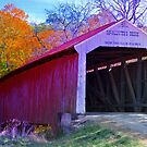McAllister's Covered Bridge ~ Rockville, Indiana by Marie Sharp