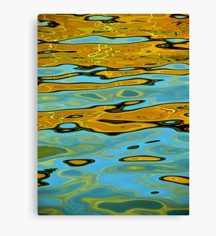 Bizarre Reflections Canvas Print
