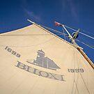 Biloxi Schooner Sail  by Jonicool