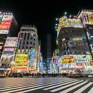 Shinjuku at Night by stephenk