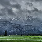 First Snow by Daidalos