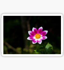 Vivid Flower Sticker