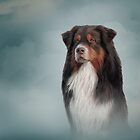 Australian Shepherd dog. Drawing, illustration funny dog by bonidog