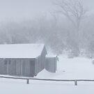 Snow Storm, Bluff Hut, Alpine National Park, Victoria, Australia by Michael Boniwell