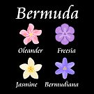 Colorful Bermuda Flower Icons Named by TinyStarAmerica