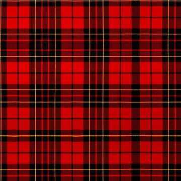 BRODIE RED MODERN TARTAN 2 by IMPACTEES