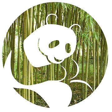 PANDA BAMBOO FOREST by phys