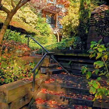Up from Home, Autumn, Vancouver BC by PriscillaTurner