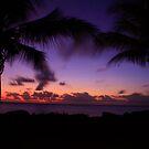 Sunrise flyfish point by Ron  Wilson