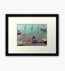 Siesta at Balaton Framed Print