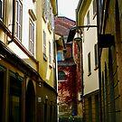 Street Scene, Monza, Italy by Douglas E.  Welch