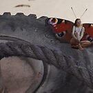 Butterfly Lady one By Miss K L Slomczynski KABFA by KABFA