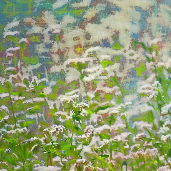 Abstract meadow