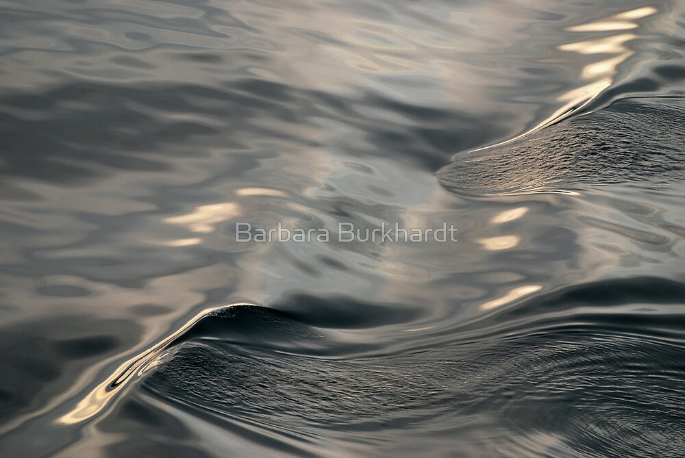 Satin Slick - A  Water Study by Barbara Burkhardt