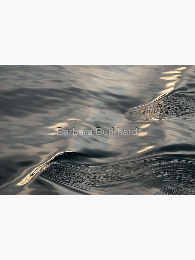 Satin Slick - A  Water Study by buzzword