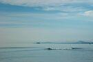 Lazy Sea by Werner Padarin