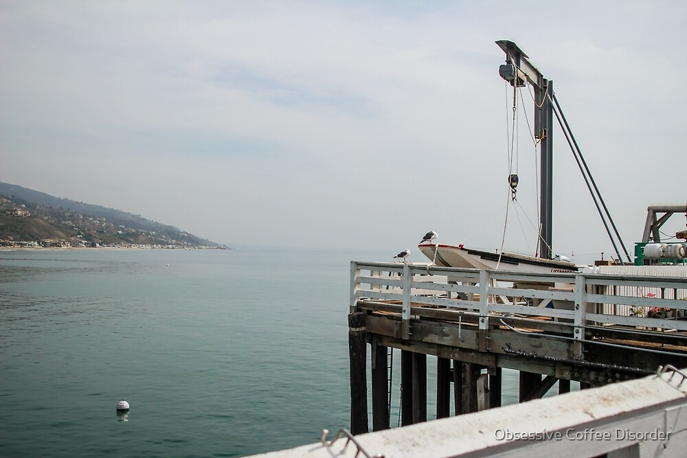 Malibu Pier by Obsessive Coffee Disorder