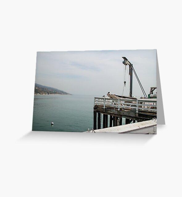 Malibu Pier by Obsessive Coffee Disorder