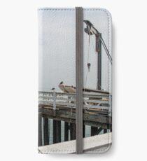 Malibu Pier iPhone Wallet/Case/Skin