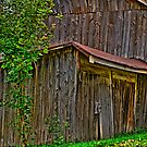 West Montrose Shed by sundawg7