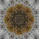 Ornate Inlay Dance Floor by Rhonda Strickland