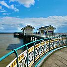 The Pier at Penarth by Tsitra