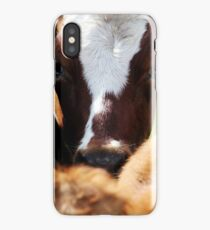 28.5.2015: Cow II iPhone Case/Skin
