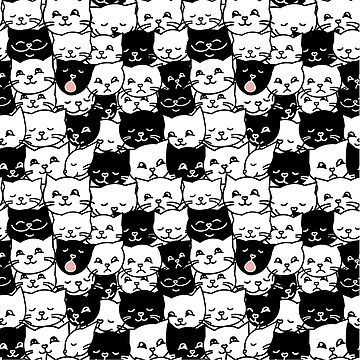 Funny black and white cats by naum100
