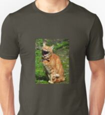 A Toothy Grin from Tabby Cat T-Shirt