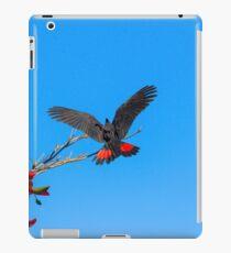 Red Tailed Black Cockatoo iPad Case/Skin
