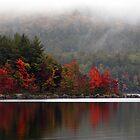 September Fog by Joanne  Bradley