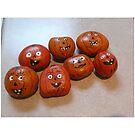 cute pumpkin rocks by Istvan Hernadi