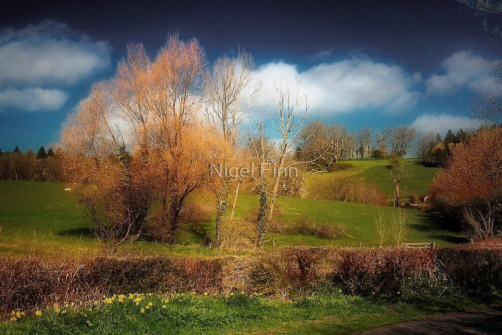 Landscape Alive by Nigel Finn