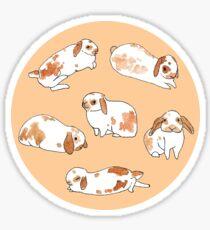 Chestnut Rabbit Sticker