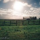 Sun Over The Ranch Hawaii by TheWaywardVixen