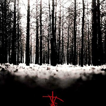 The Blair Witch Project by bearsnightout