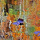 leaf by Terri~Lynn Bealle
