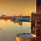Evening Sun at Paddy's Hole by Phillip Dove