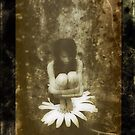 Daisy Girl by Nikki Smith
