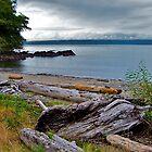 Clallam Bay by Nancy Richard
