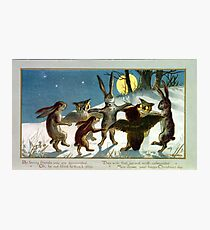 Victorian Woodland Animal Games Photographic Print