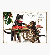 Victorian Christmas Cats Photographic Print