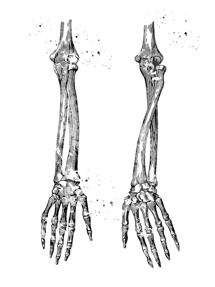 Arm Bones | Poster